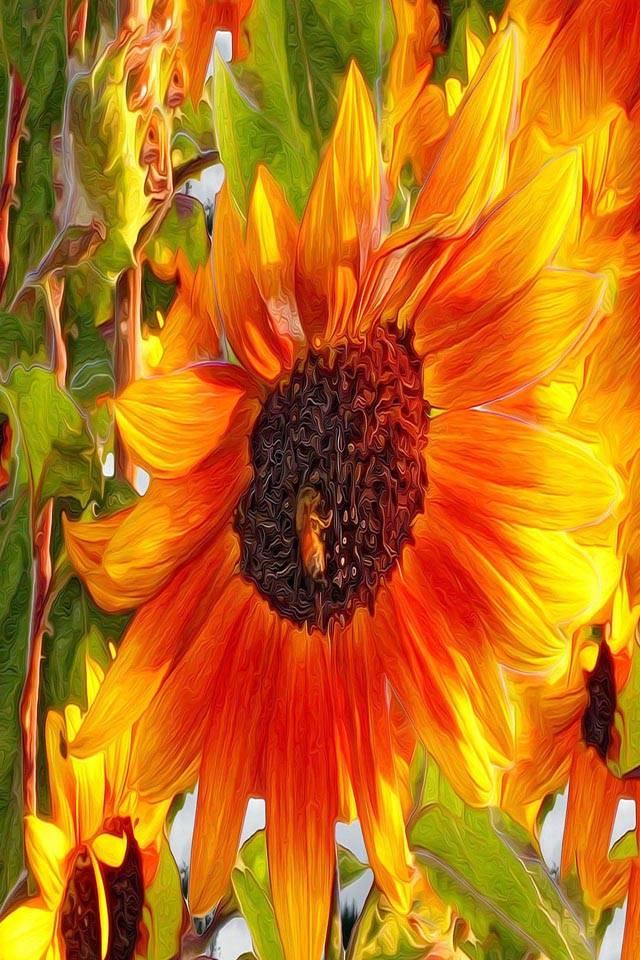 Art design sunflower