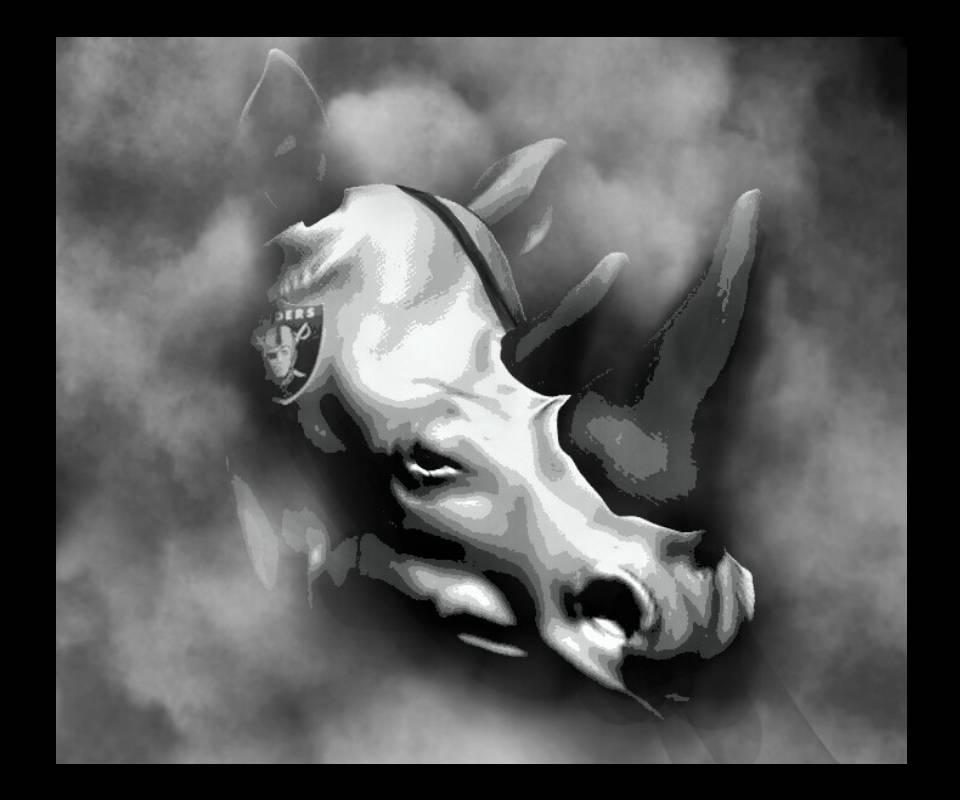Raiders Plow Rhino