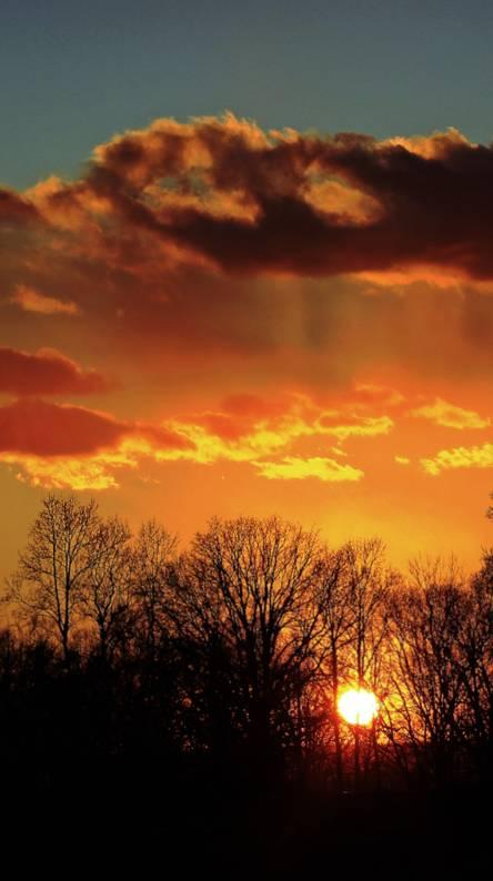 Blazing Saddles Wallpapers Sunset