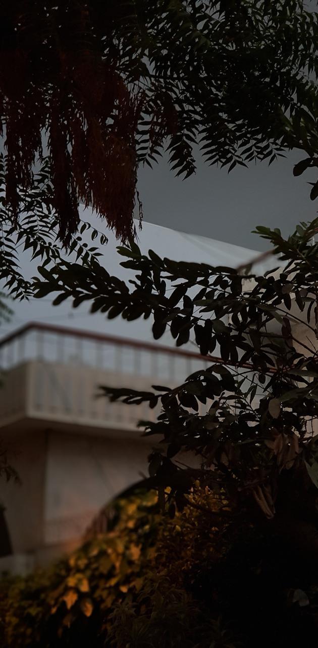 Pre Rain