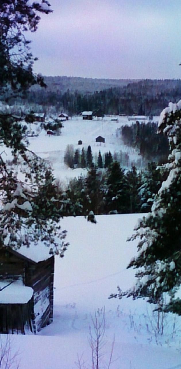 Winter Scene 18