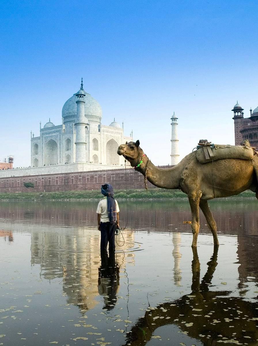 Taj Mahal N Boy