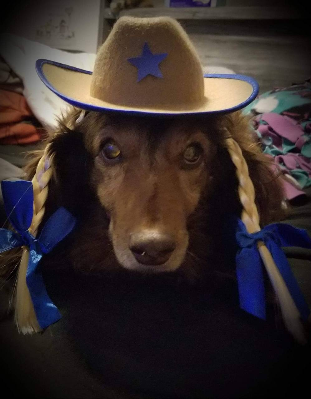 Cowgirl dixie