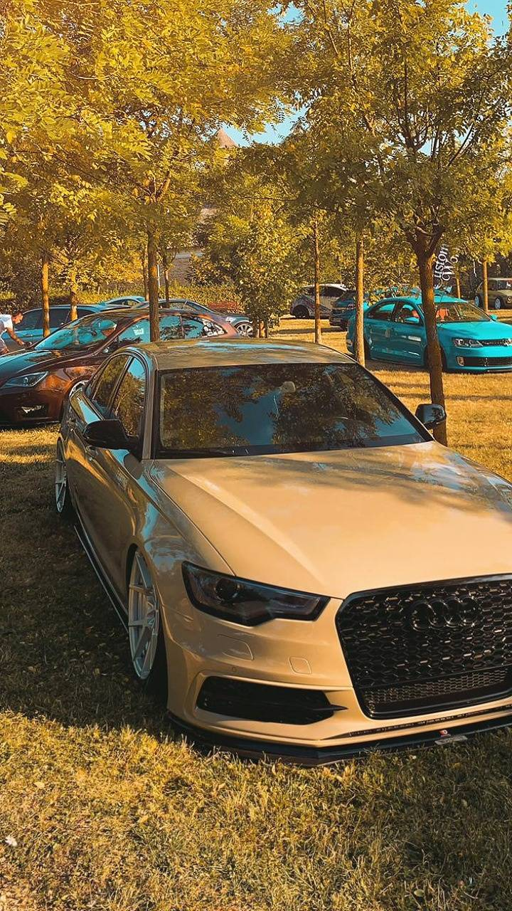 Audi A6 low