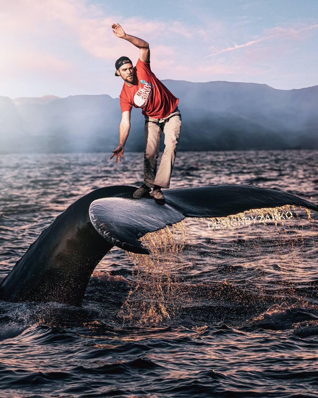 Whale Balancing