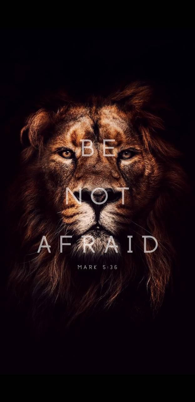 Be Not Afraid wallpaper by avilla1047 - a5 - Free on ZEDGE™