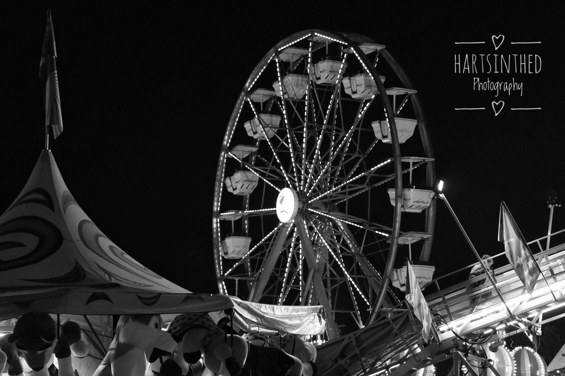 Carnival Nights