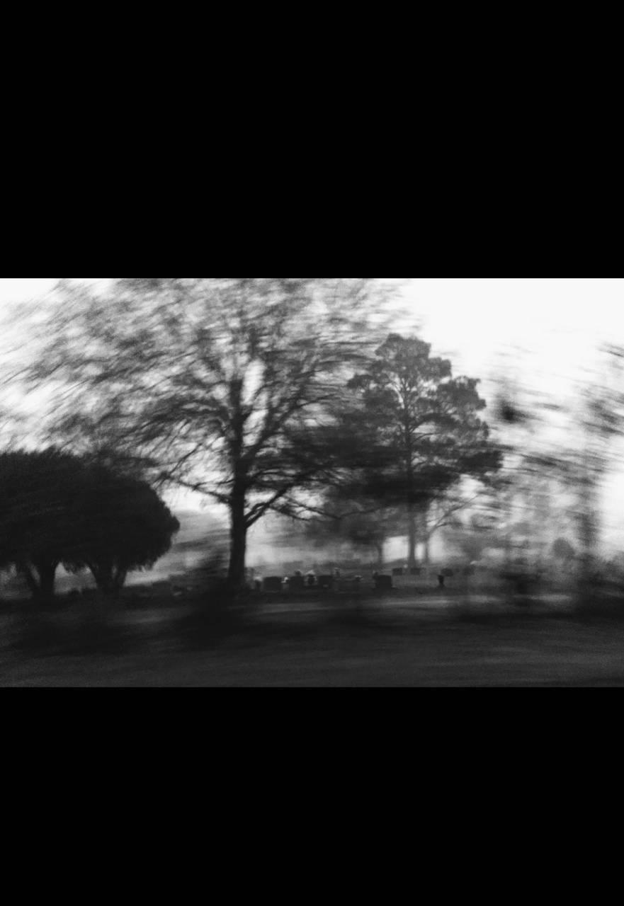 Fog in a cemetery 2