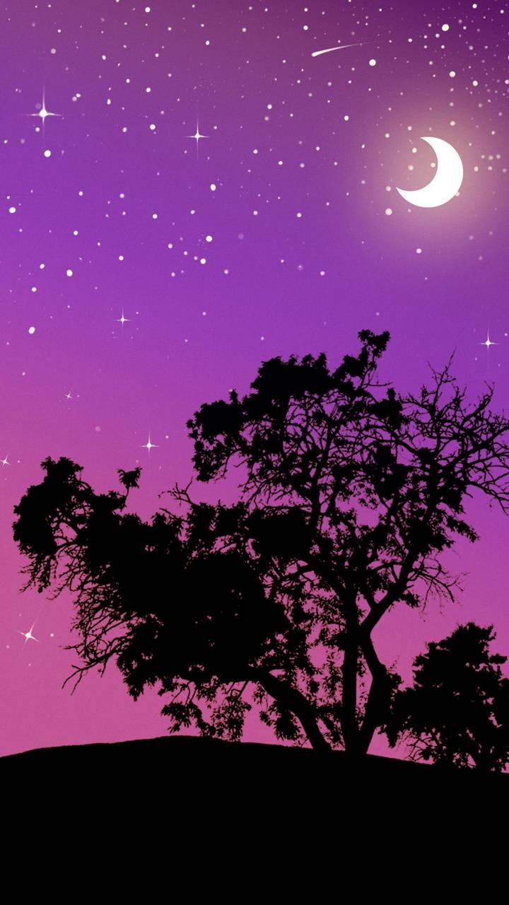 Stars NIght Vector