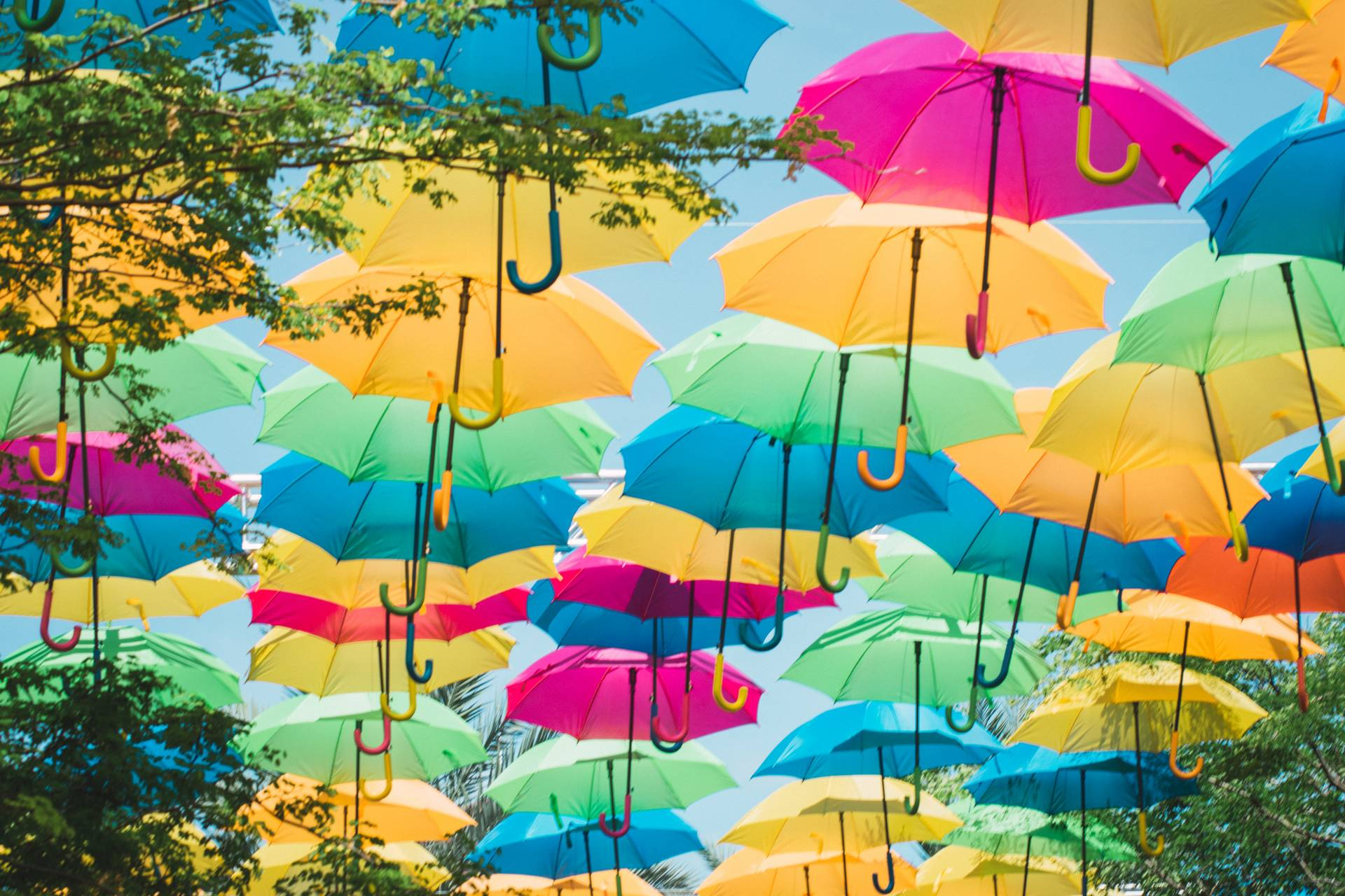 Umbrellas Path