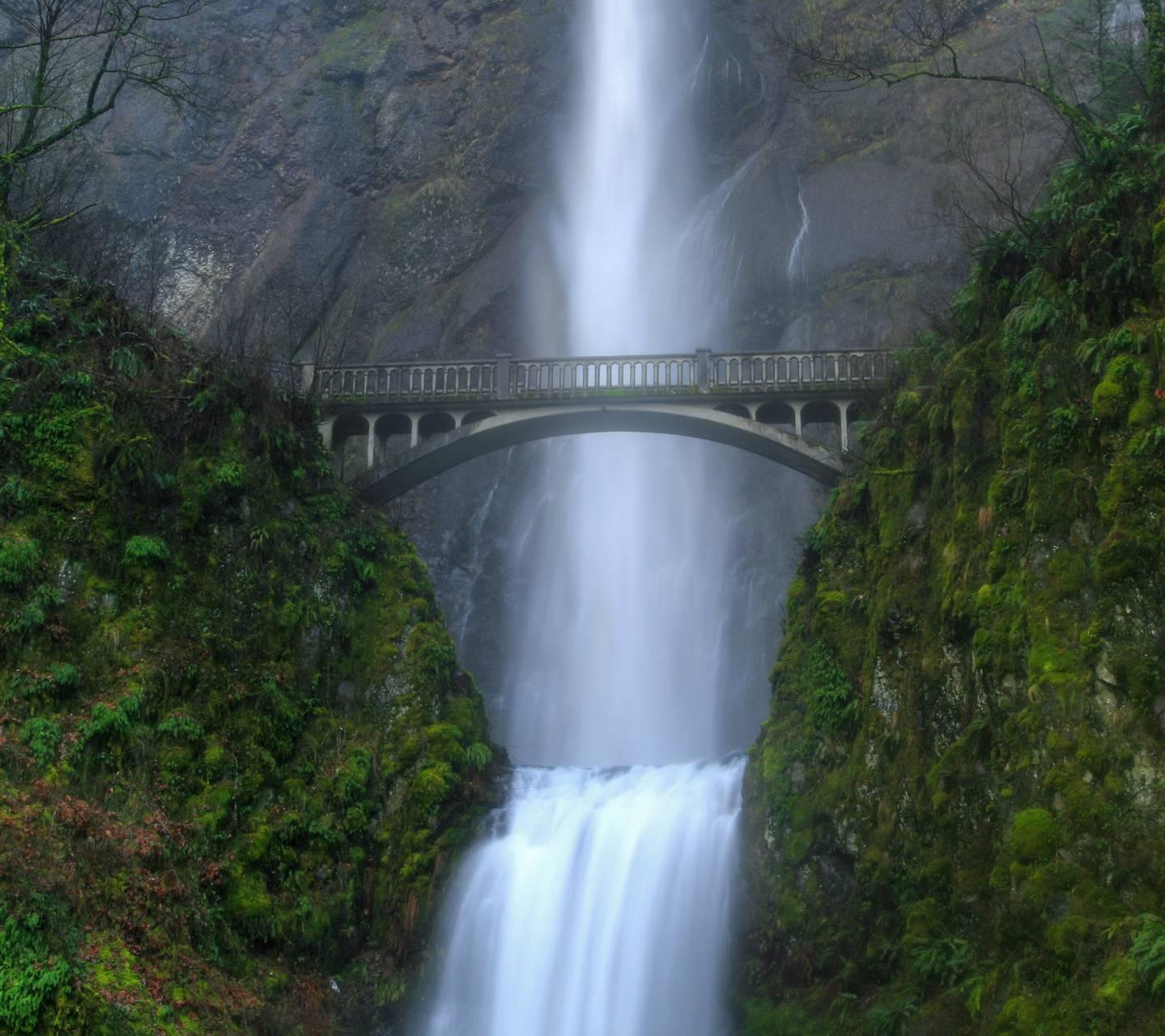 Bridge And Fall