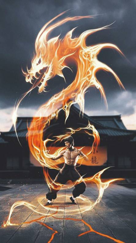 Bruce Lee Wallpapers Free By Zedge