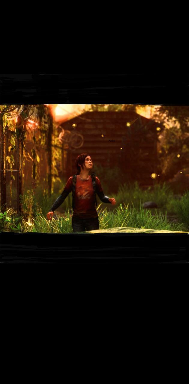 Ellie Fireflies