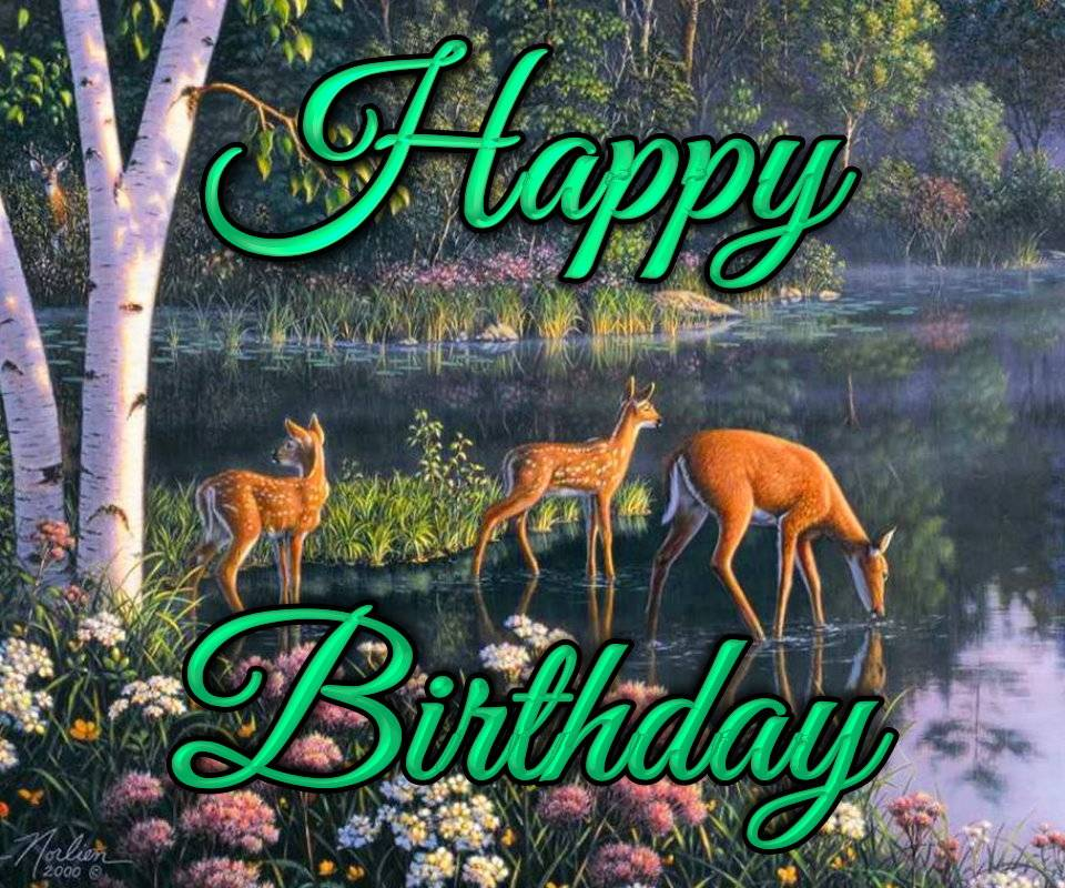 Happy Birthday Deer