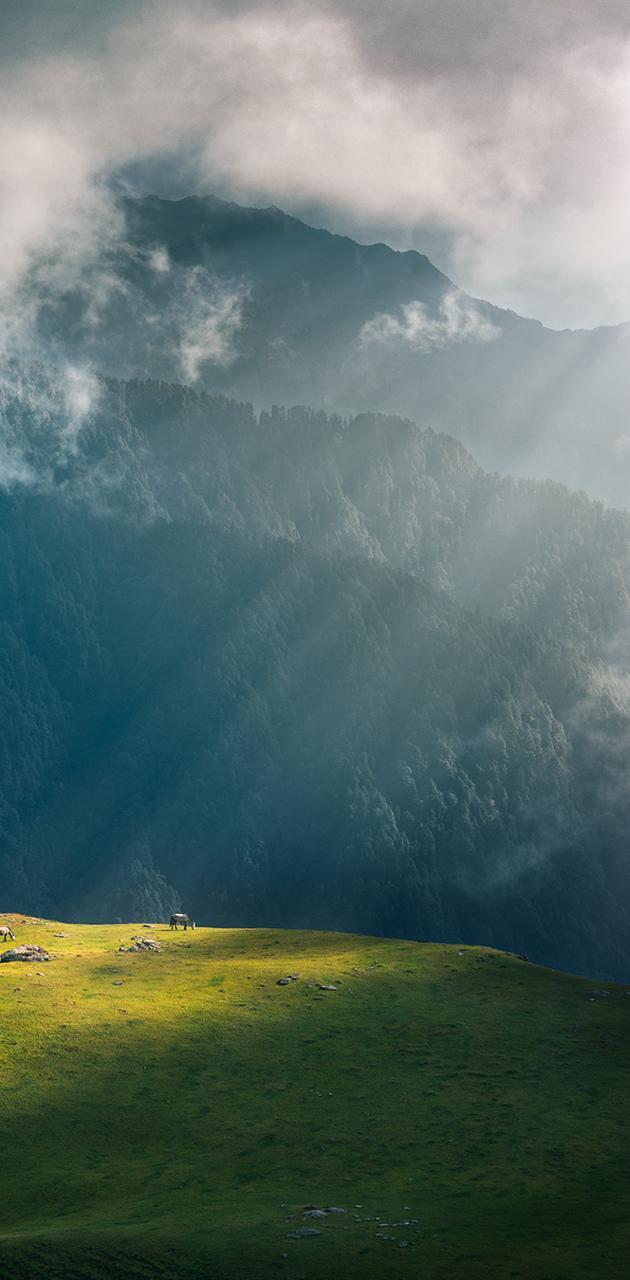 Giant Cloud Wave