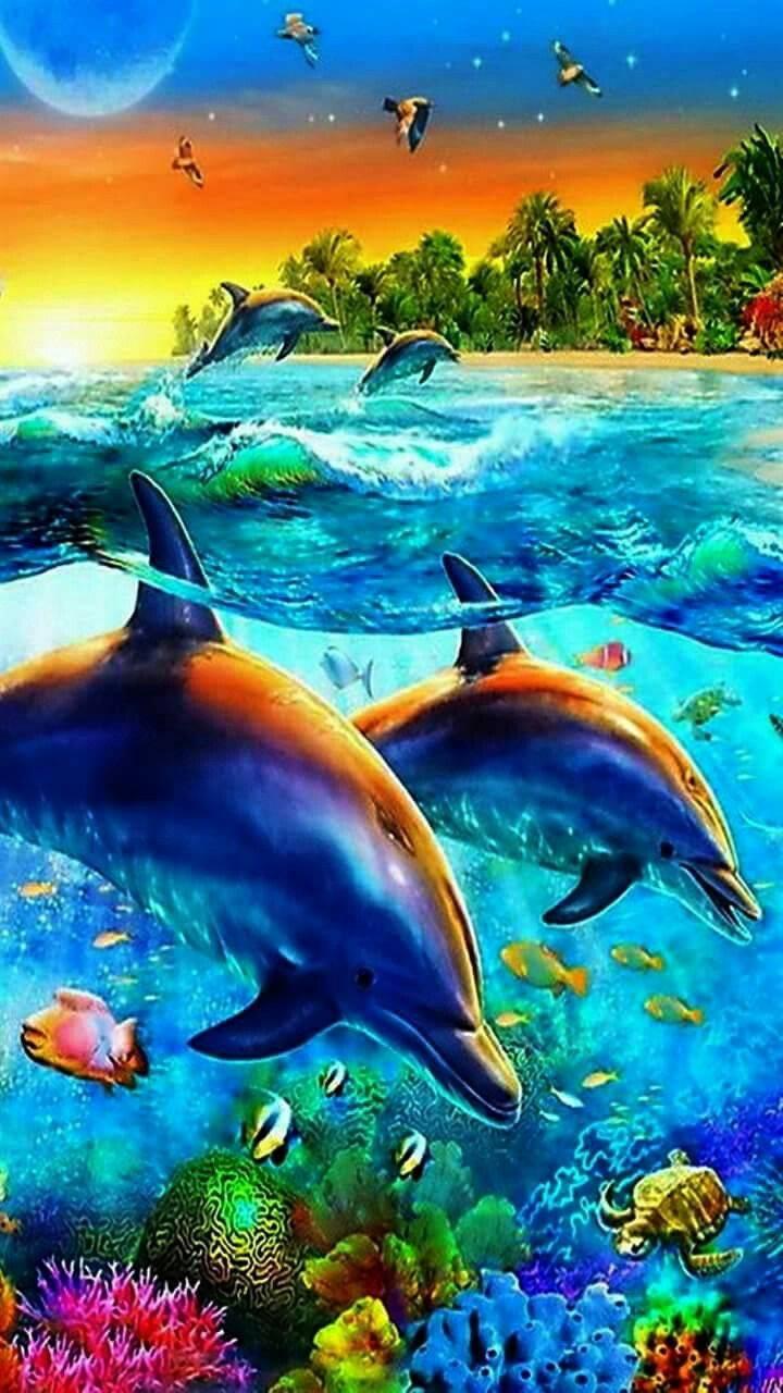 Tropical dolphin