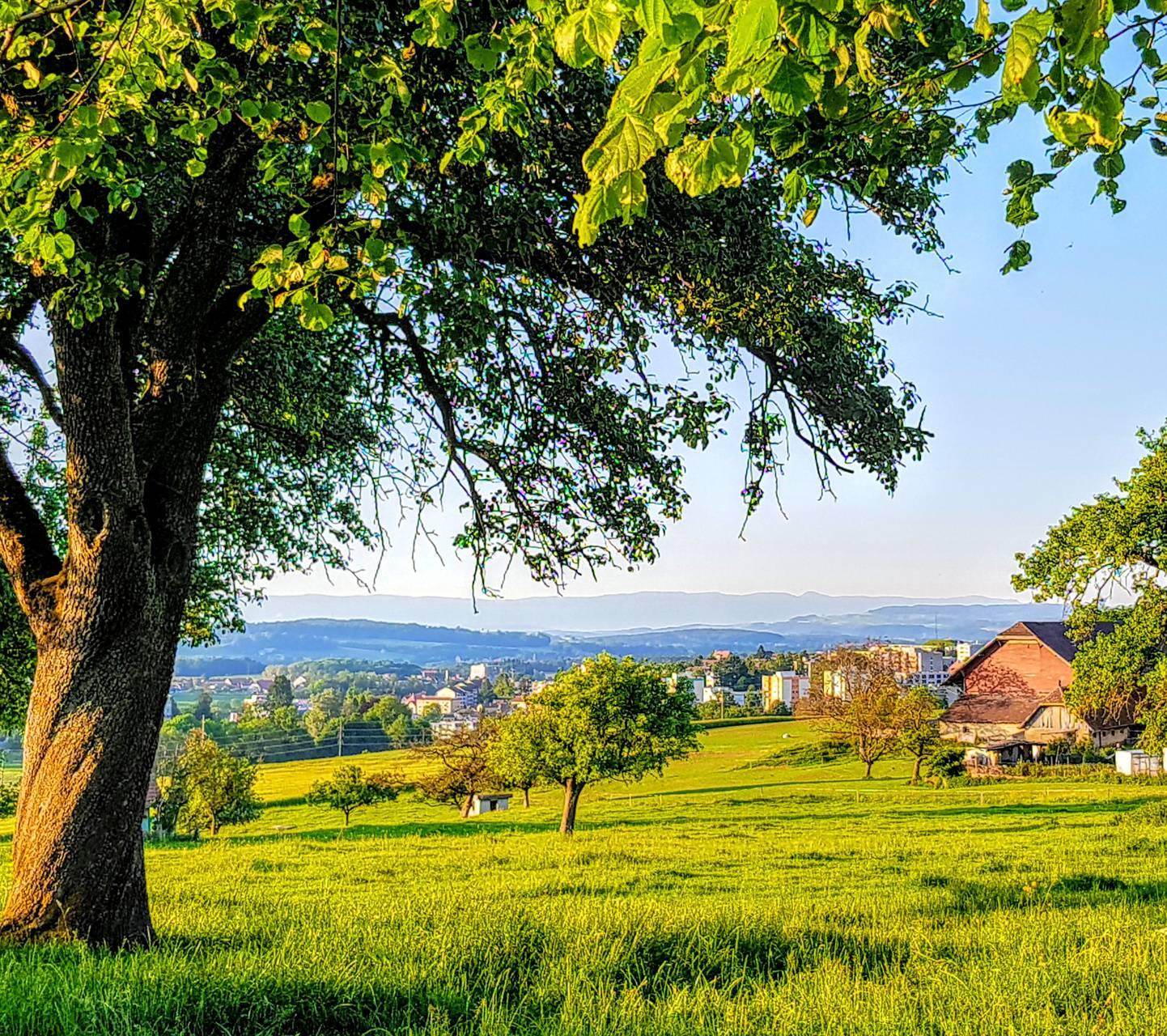 Villars-sur-glane