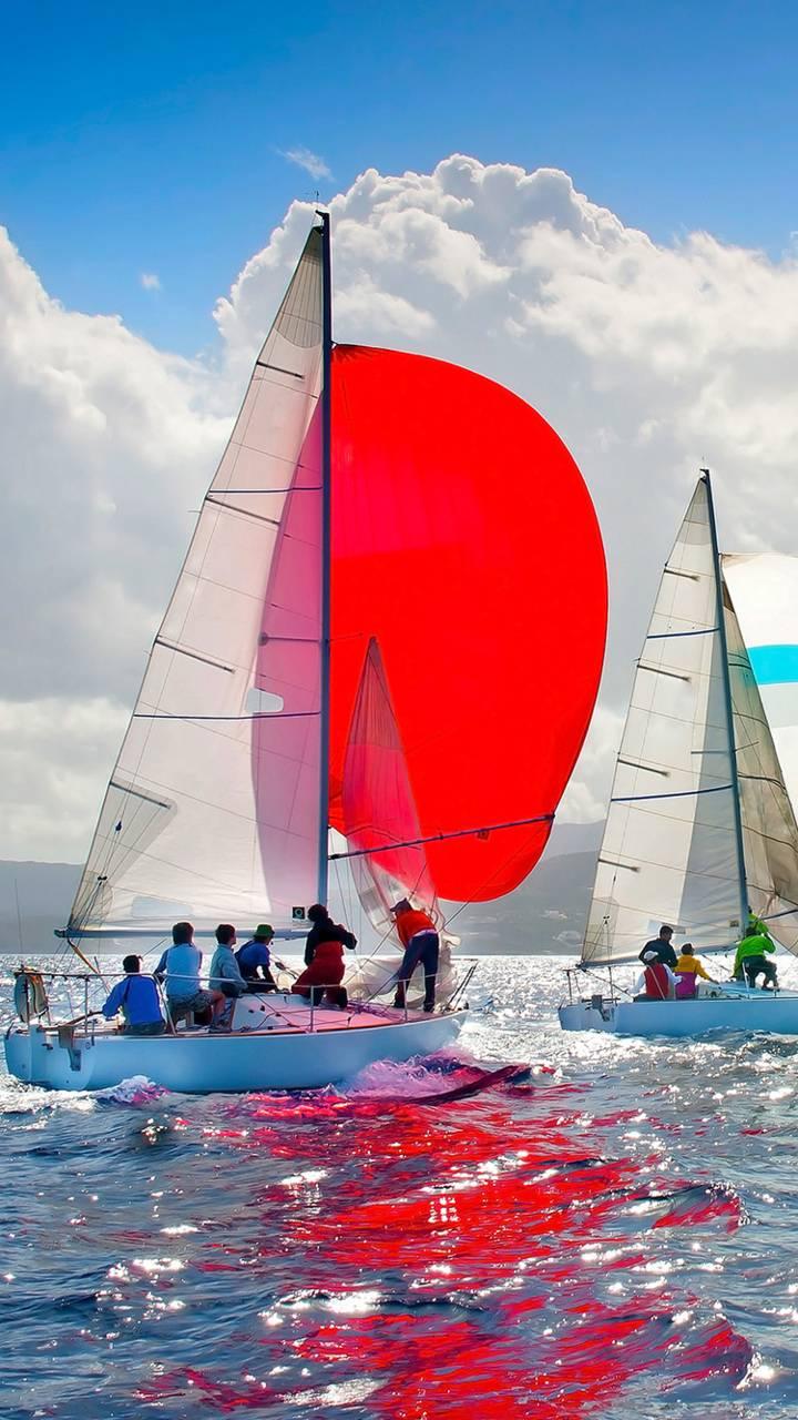 Love of sailing