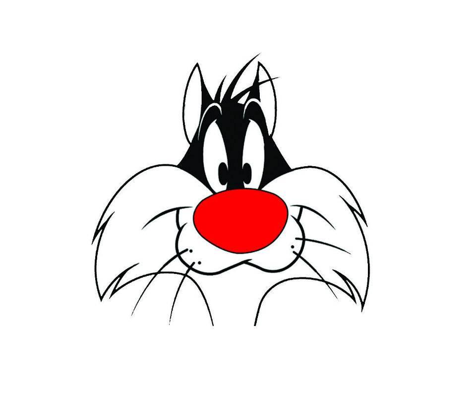 Sylvester 21
