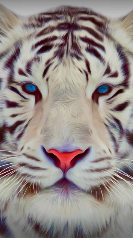 Tiger Abstract