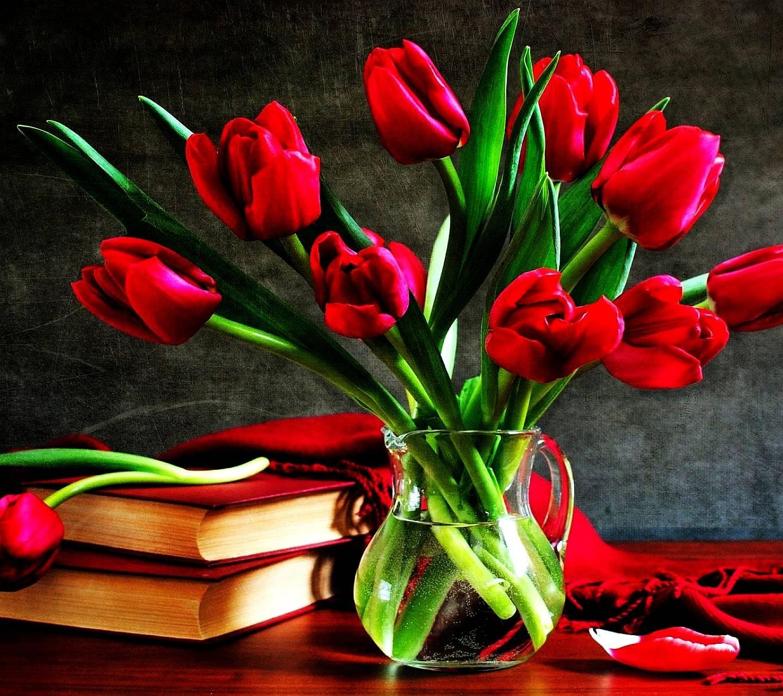 tulips-----------