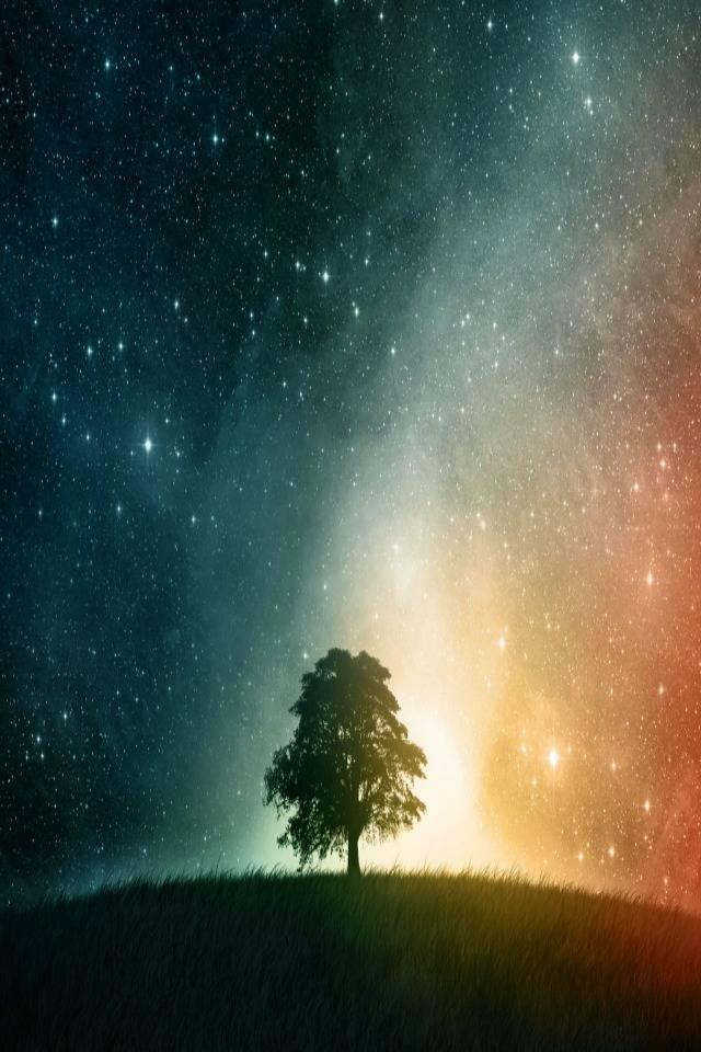 Starry Sky Tree Hd