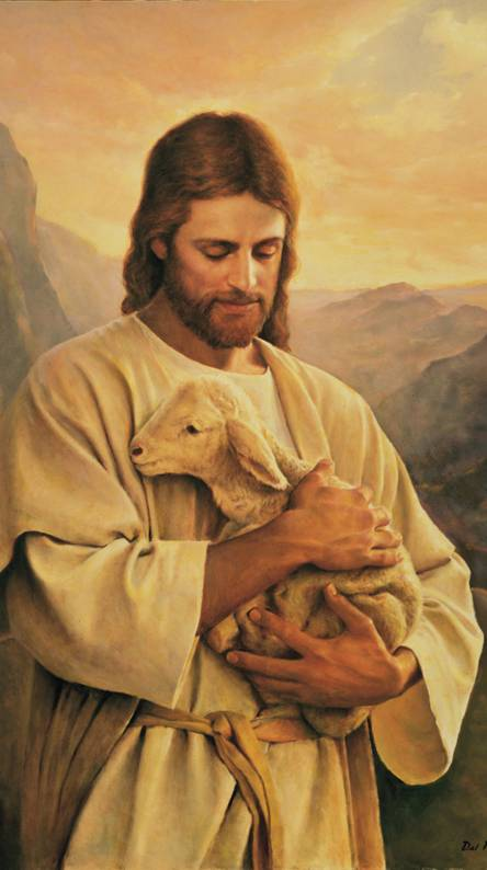 Jesus Lost Lamb