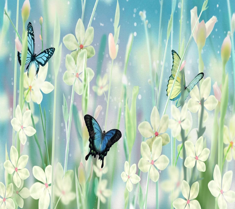 jasmine butterflies