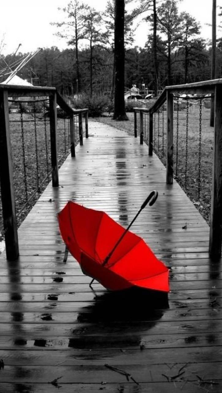 Red Umbrella Wallpaper By Skate BoY
