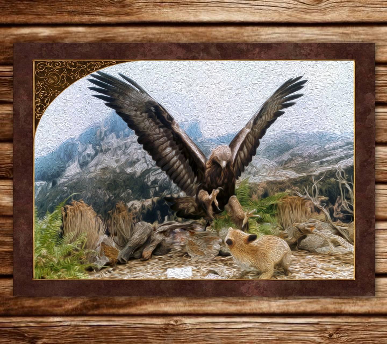 Eagle Vs Fox