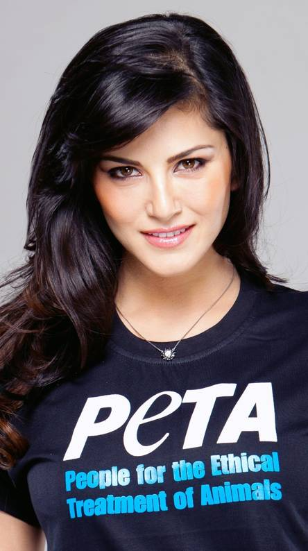 Sunny Leone Hot Wallpapers Free By Zedge