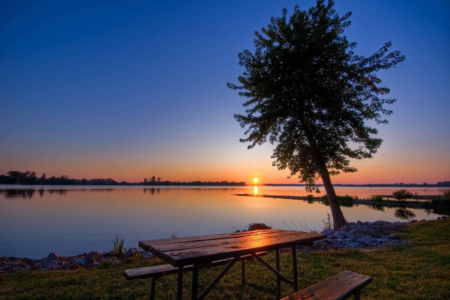 Lake sunset tree