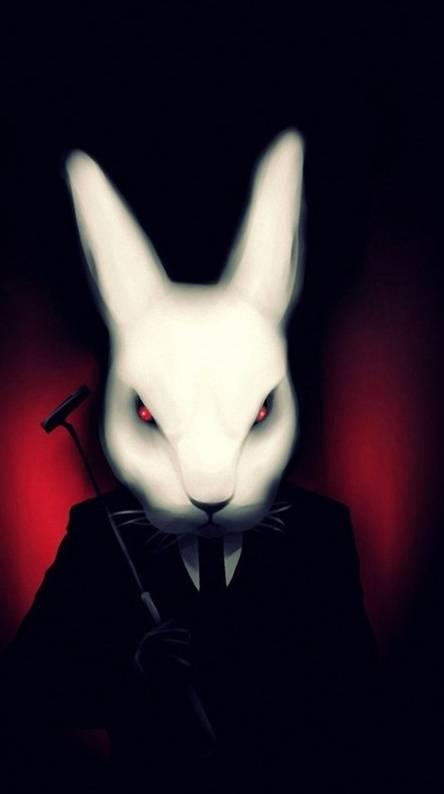Hitman Rabbit