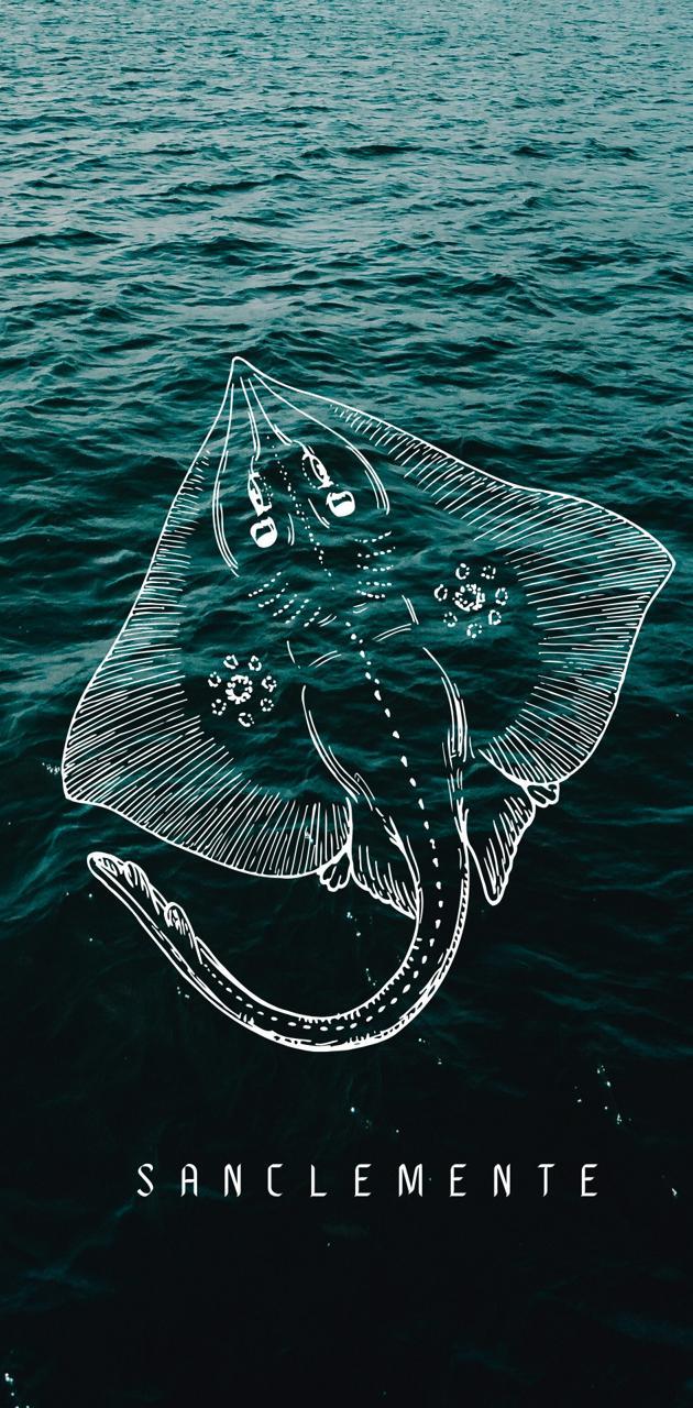Sea depth