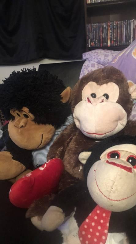 Stuff monkeys