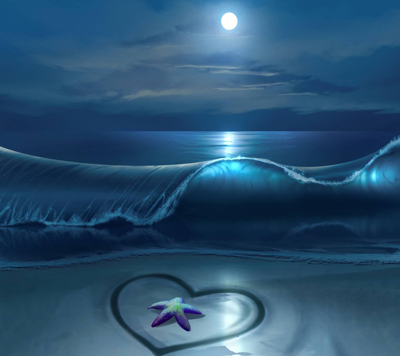 Sea off Love