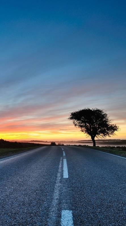 Road Sunset Wallpapers