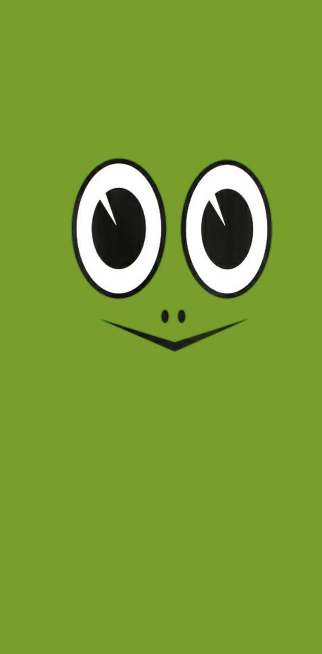 Turtle Face TM