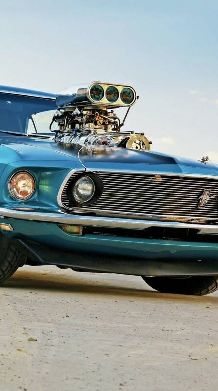 Position 69 MUSTANG PRO