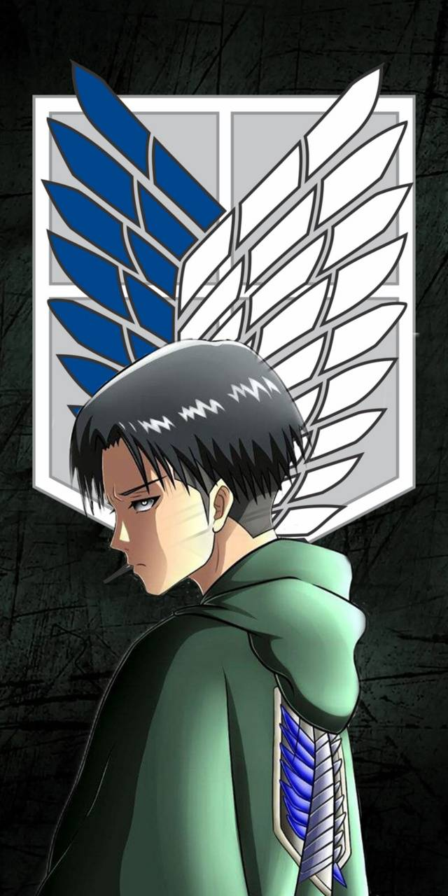 Attack On Titan Levi Wallpaper By Lildrax Ac Free On Zedge