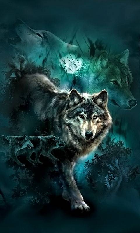 Night Wolves Collage