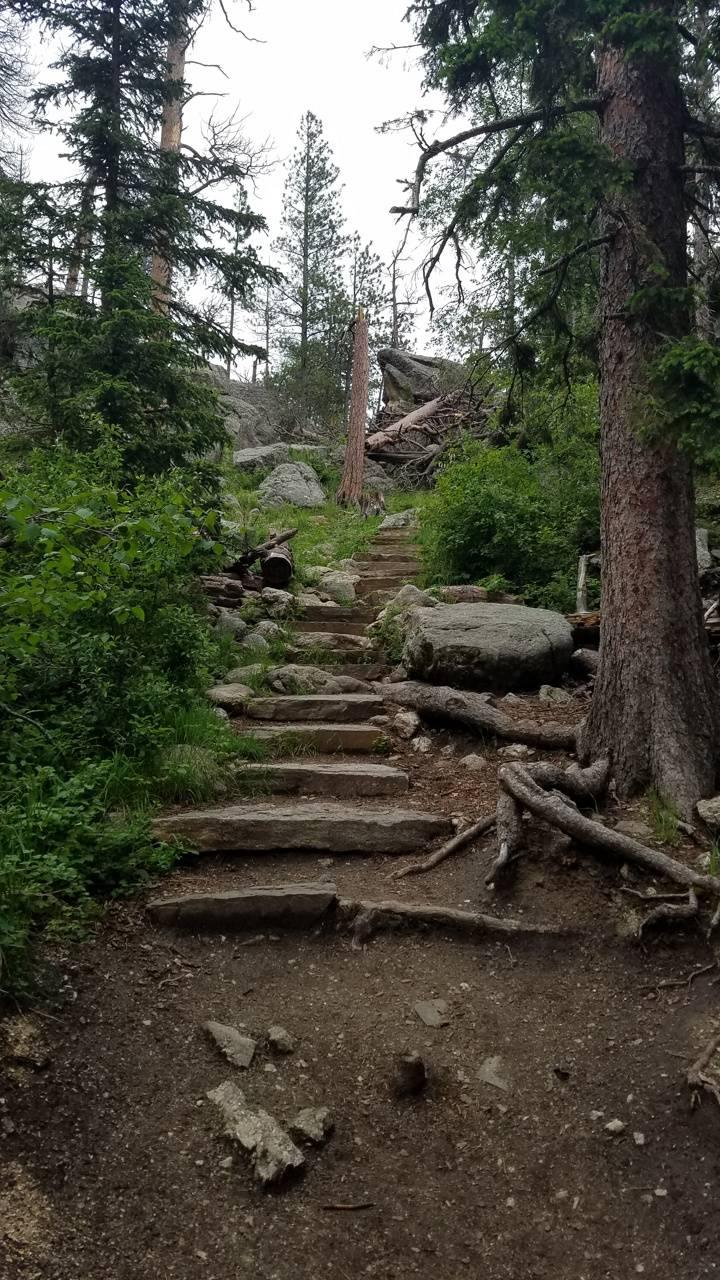 Sylvan Trails