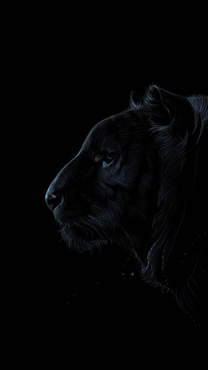 Black Tiger Wallpaper By Thirusanjaykumar 02 Free On Zedge