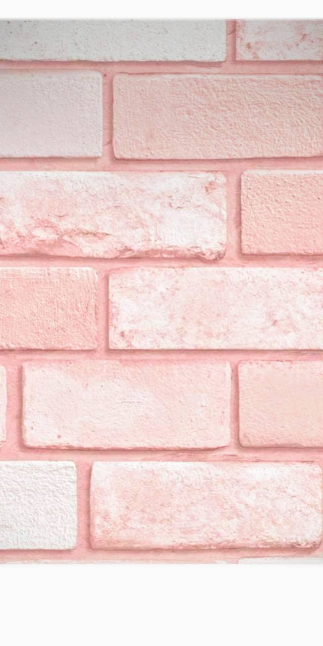 Asthetic Pink Wall