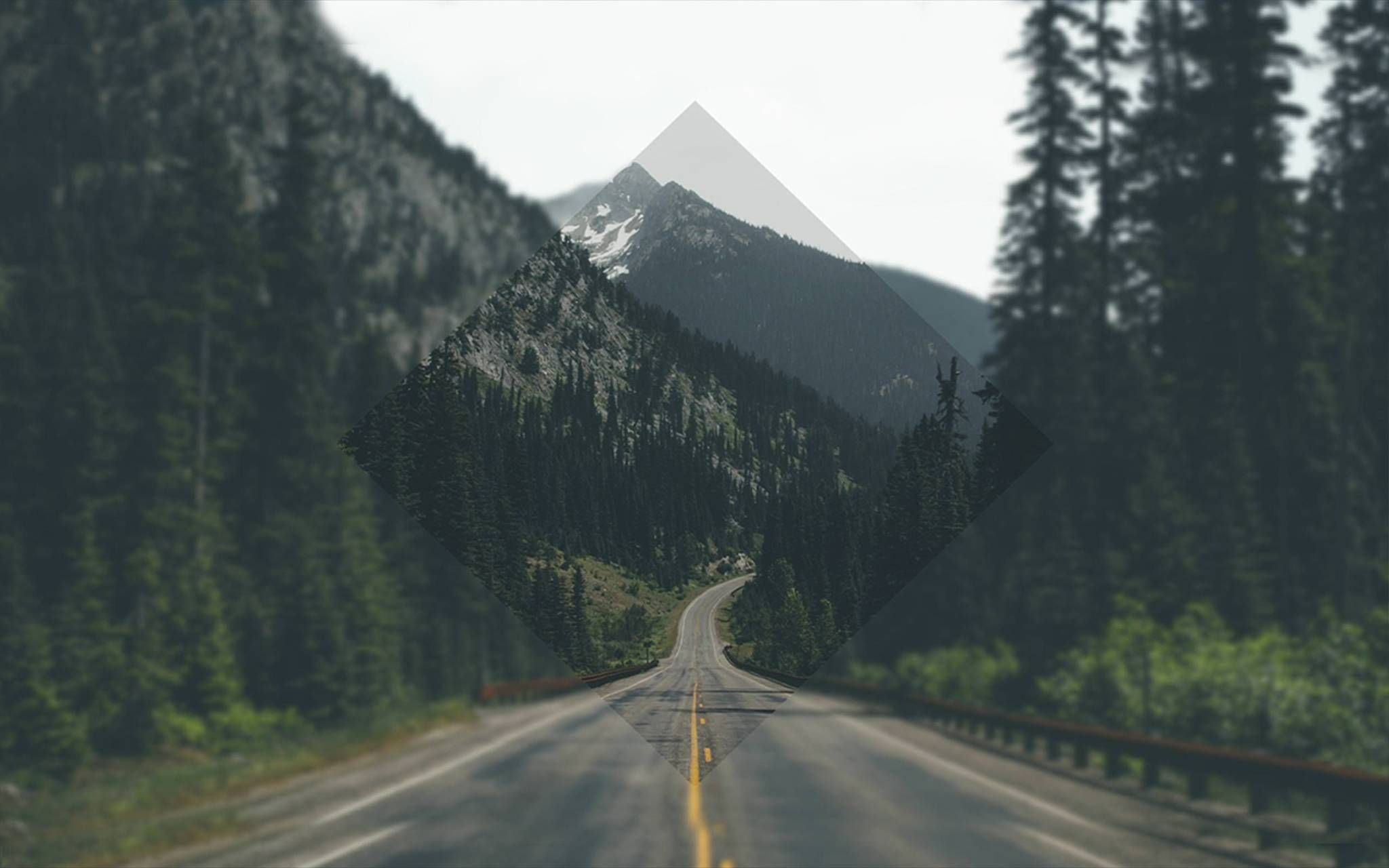 Road To Nature