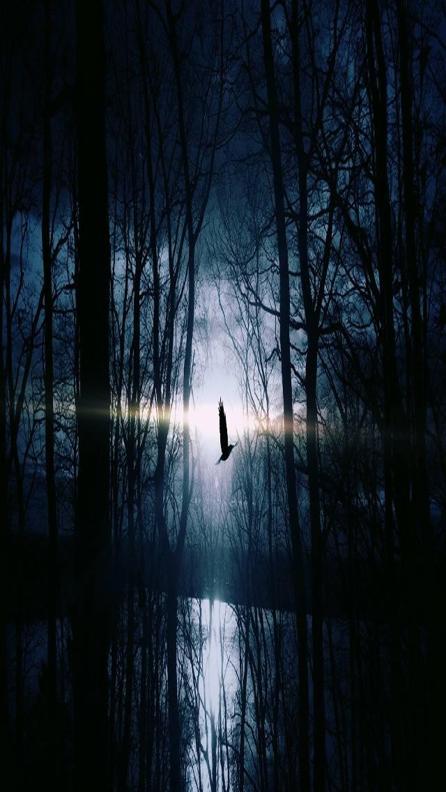 Mysticl  Night
