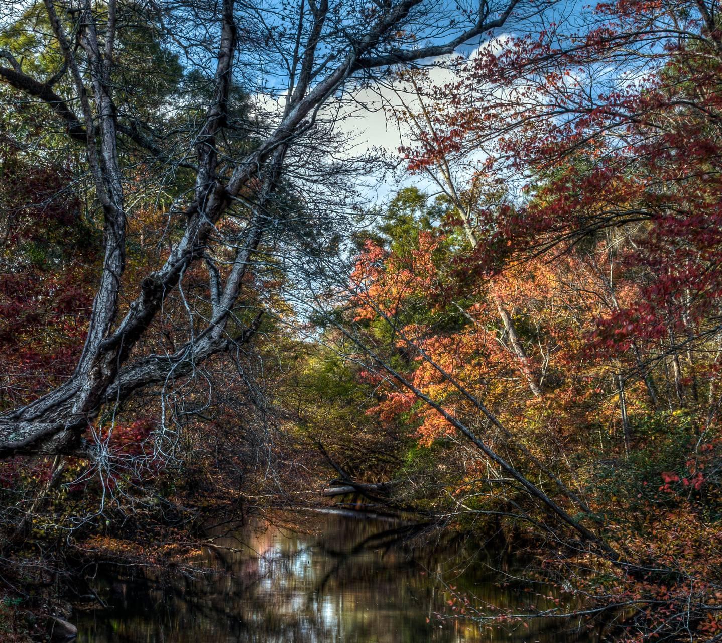 Rottenwood Creek