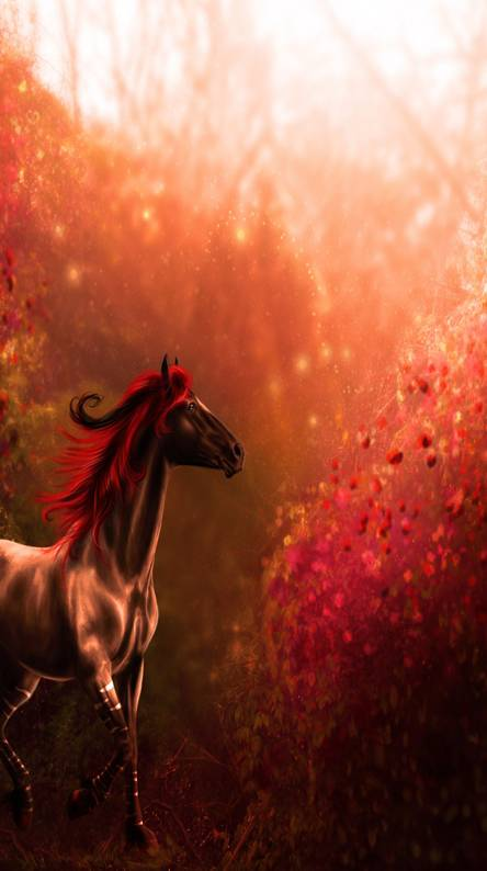 Horse Wallpapers Free By Zedge