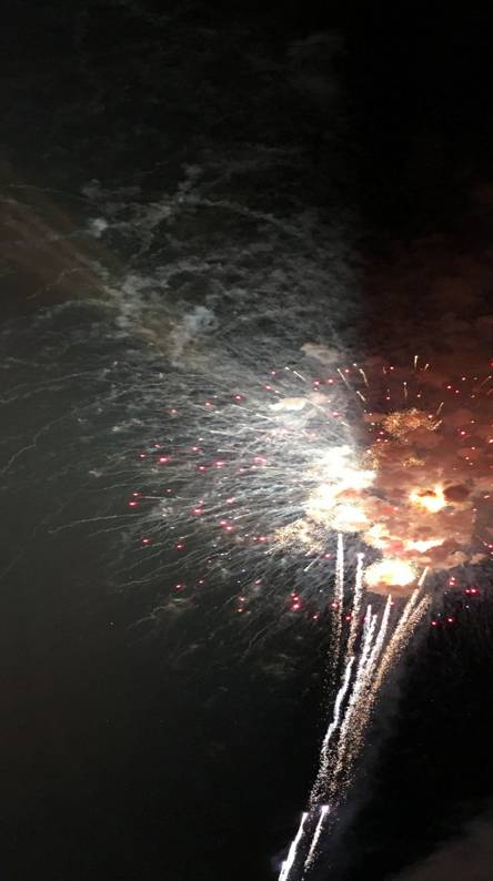 Firework tiger