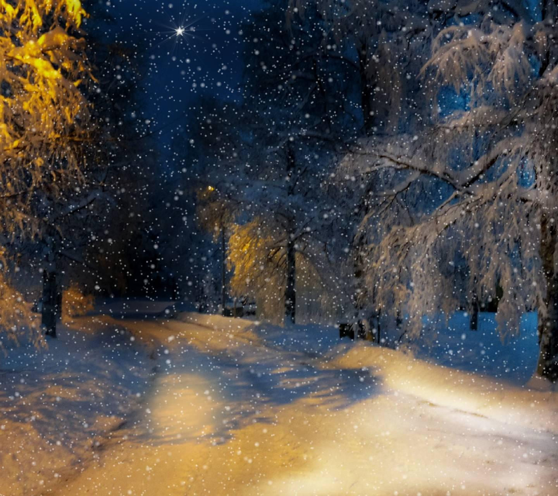Cold Winter 4
